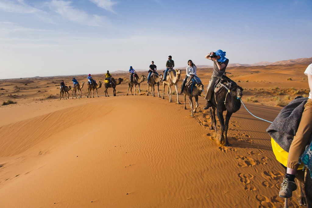 camel ride draa oases dunes